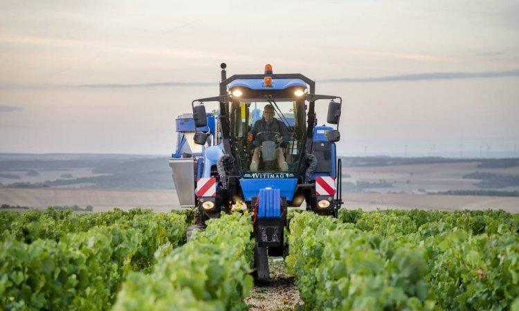 Photo de domaine viticole à Chabliset sa région.